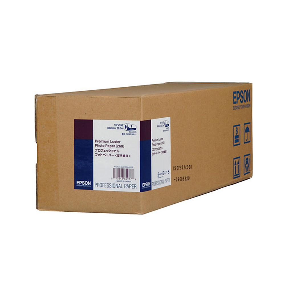 Χαρτί EPSON Premium Luster Photo Paper 20″ x 30,5m (C13S042080) (EPSS042080)