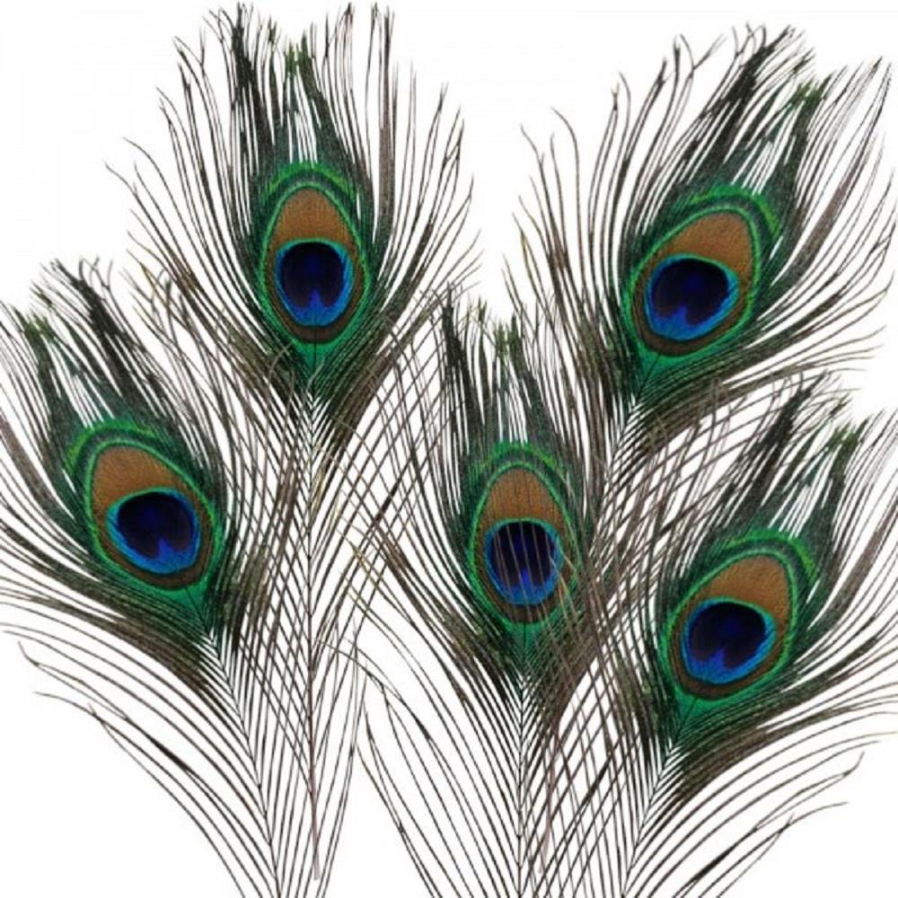 Φτερά παγωνιού Efco 5 τεμάχια
