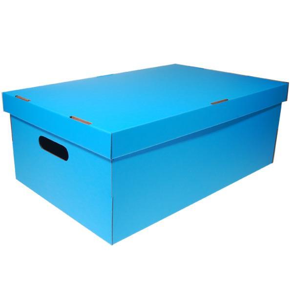 Νext κουτί colors γαλάζιο Α3 Υ19x50x31εκ.