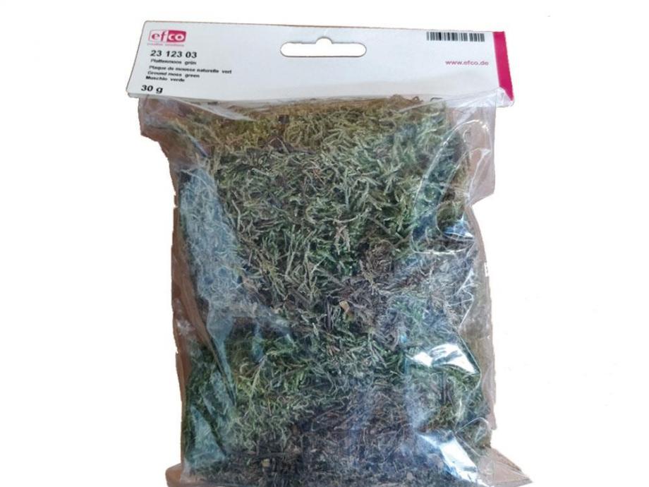 Γρασίδι μακέτας εδάφους πράσινο Efco 30 gr