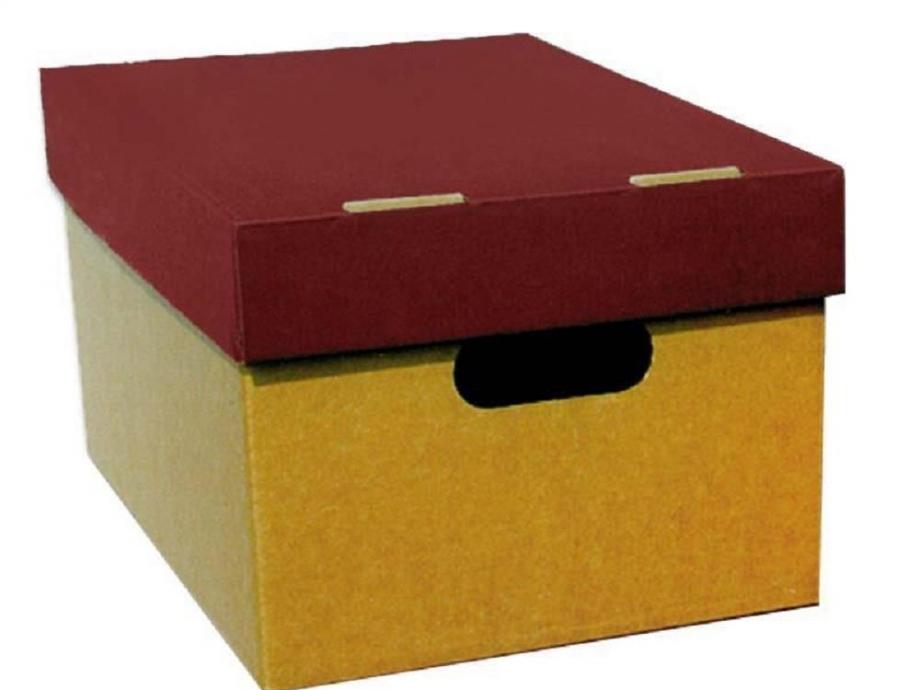 Κουτί αποθήκευσης Α4 4075 μπορντώ