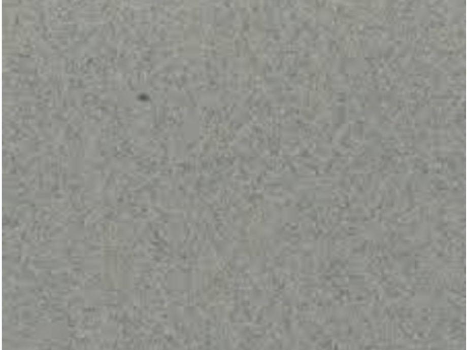 Χαρτί Canson mi-teintes 431 gris chine 50x65 cm 160 gr