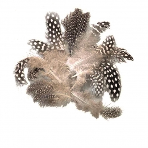 Φτερά χήνας Efco 3 gr