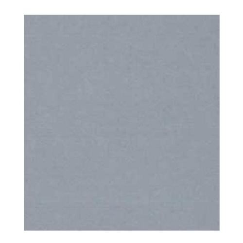 Χαρτόνι Colorline 50x65 cm light grey 220 gr