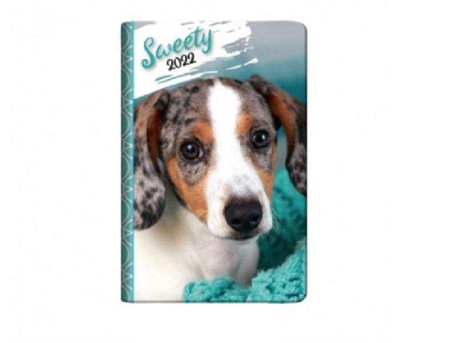 Ημερολόγιο 2021 6,5x10 2ήμερο cane e gatto