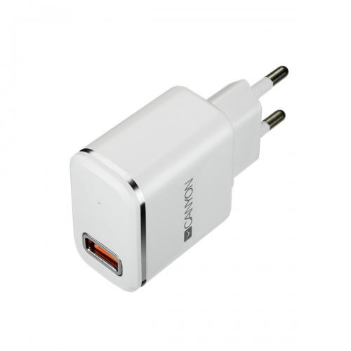 Canyon H-043 USB AC charger   Lightning USB connector, 2.4A, White Silver - CNE-CHA043WS