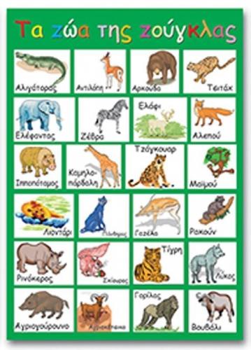 """Next εκπαιδευτική αφίσα """"Τα ζώα της ζούγκλας"""" 50x70εκ."""
